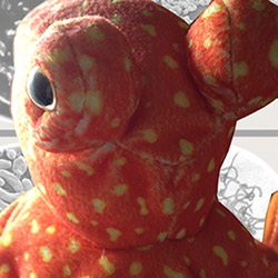 octopus250