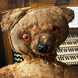 Barrie the Bear: A Star-Crossed Fringe Lover